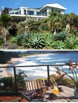 Hot Water Beach B&B Accommodation Whitianga